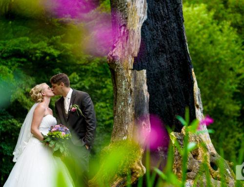 Dani & Tobi | Hochzeit mit toller Überraschung