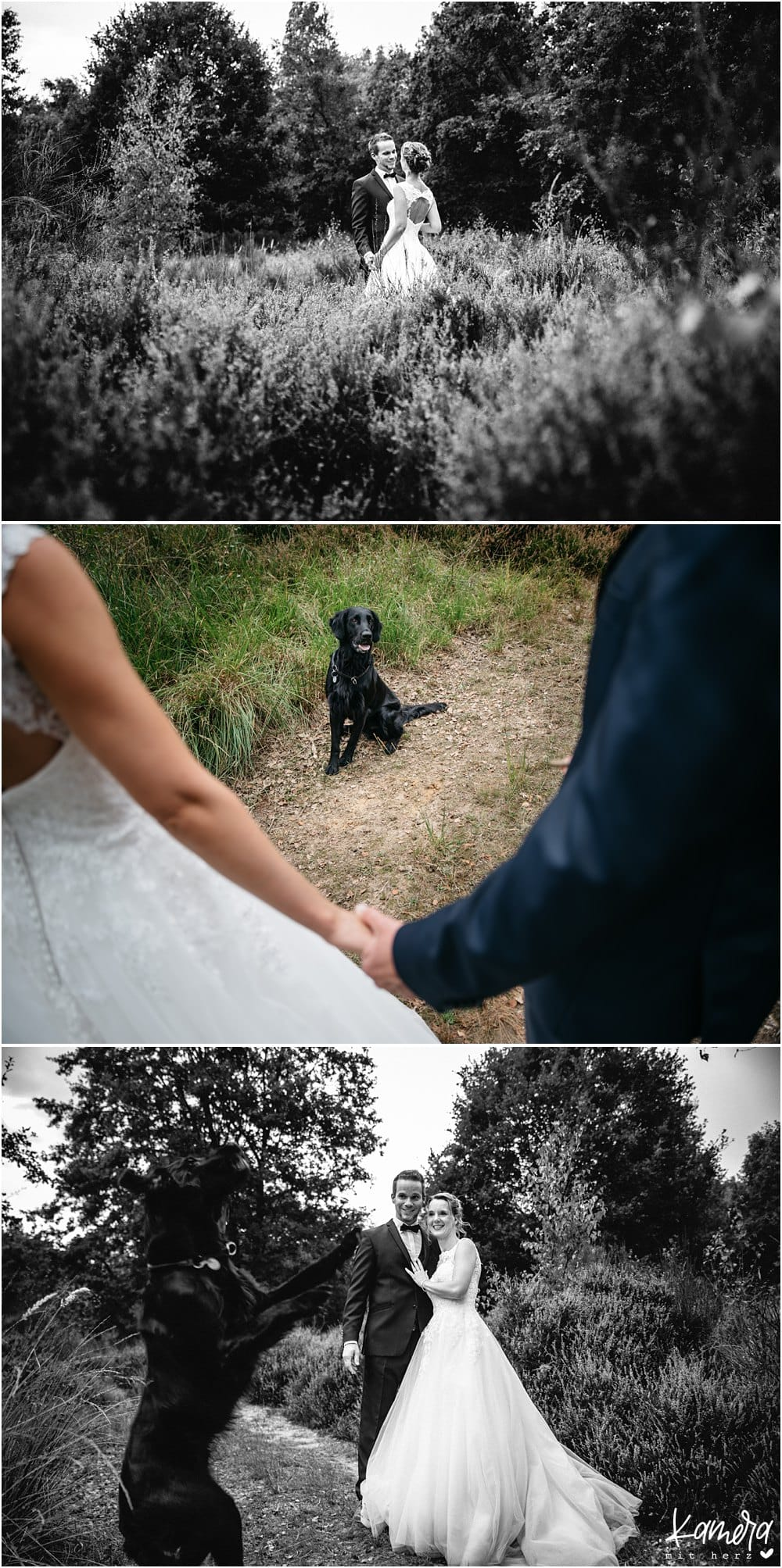 After Wedding Shooting in der Wahner Heide mit Hund