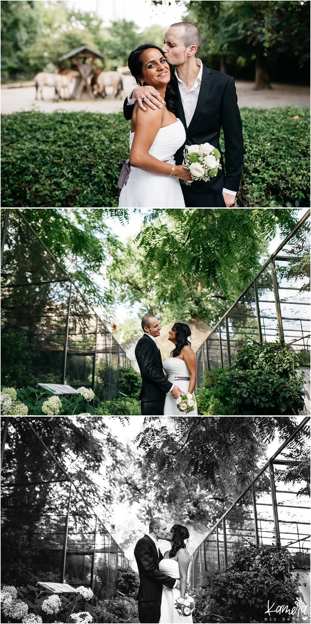 Hochzeitsfotos Kölner Zoo
