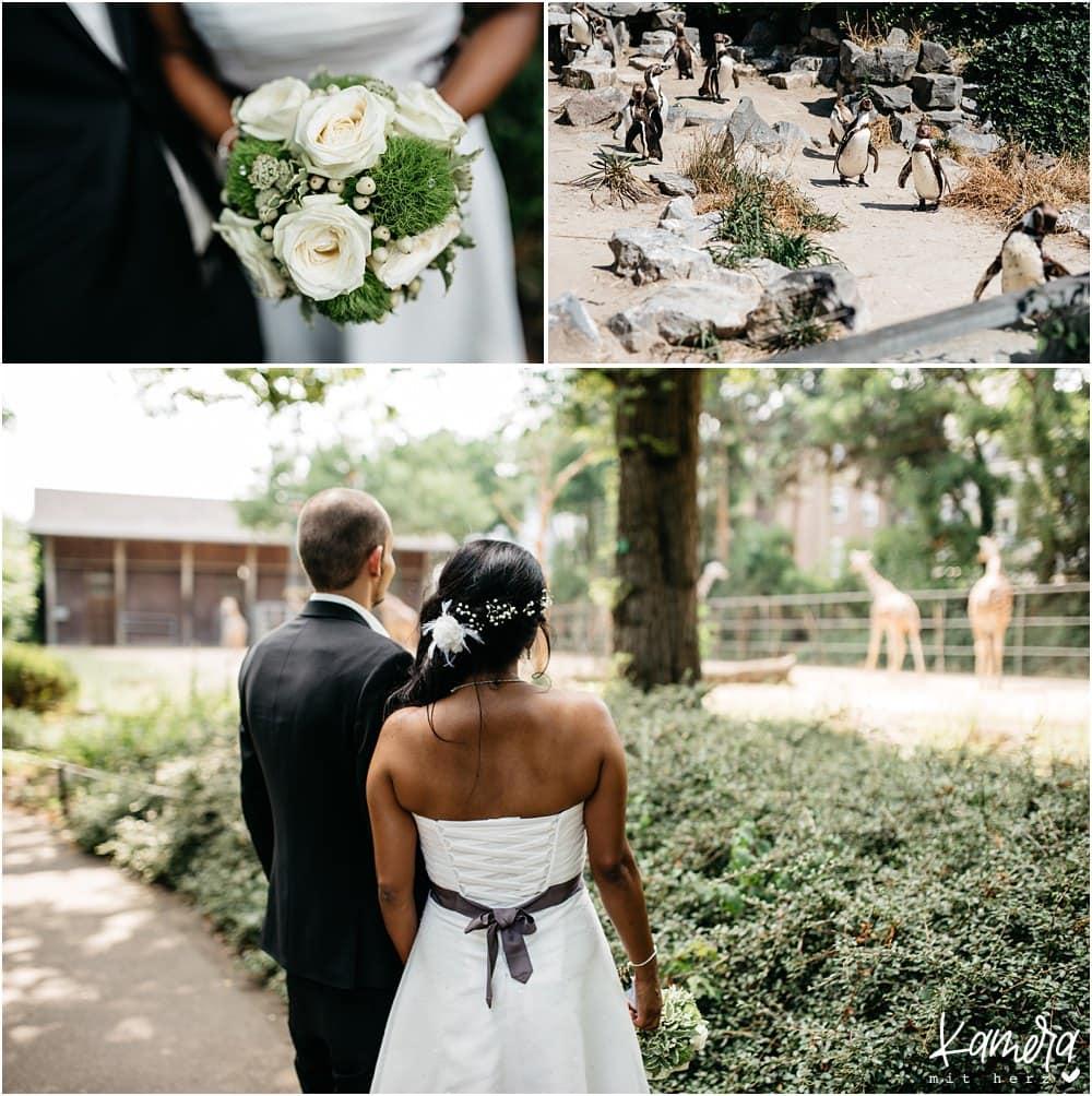 Heiraten im Kölner Zoo