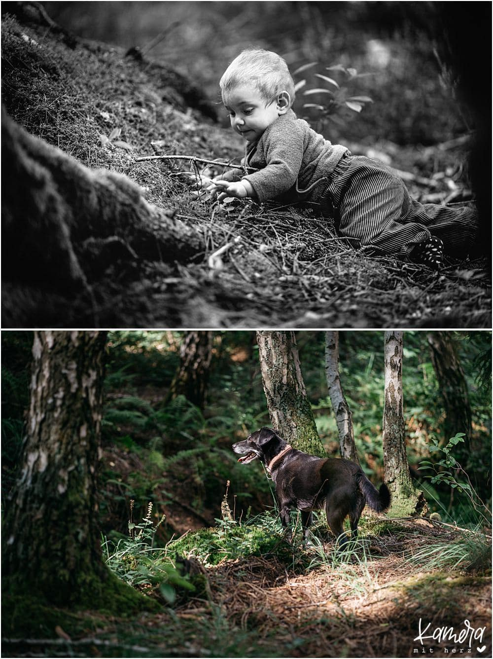 Fotoshooting Familie mit Hund